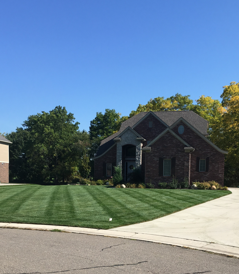 awesome lawn care